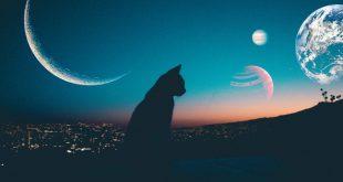 Когда будет убывающая луна в ноябре 2019 года