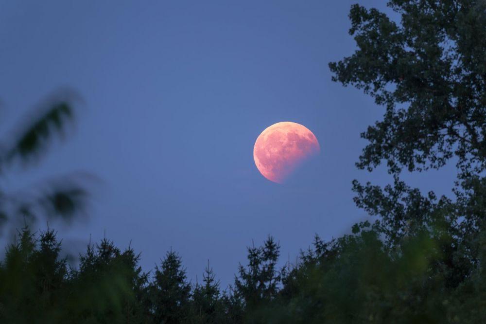 Когда лунное затмение в январе 2020 года?
