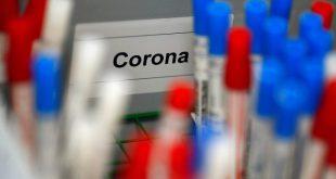 Помогает ли лимон при коронавирусе?