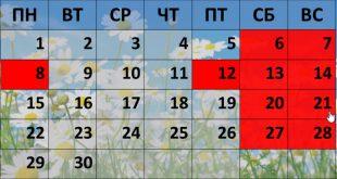 Как будут отдыхать в июне 2020 года в ДНР